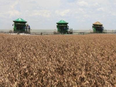 MS inclui 12 cidades em lista dos 100 maiores produtores do agronegócio