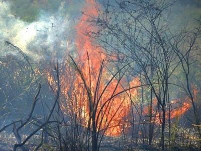Em 15 dias, Corumbá lidera ranking de queimadas no Brasil
