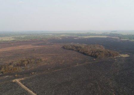 Usina em Nova Alvorada é multada em quase meio milhão por incêndio em área protegida