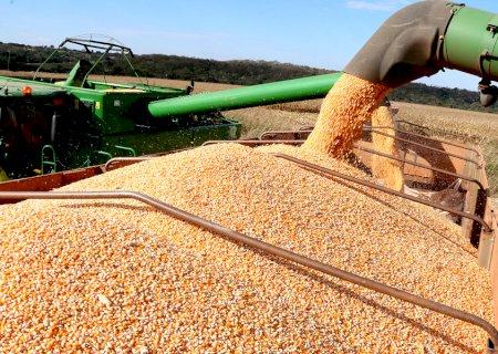 China é o destino de 79% da produção de soja exportada pelo Mato Grosso do Sul