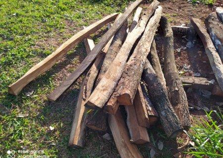 Homem é multado em R$ 1 mil por exploração e armazenamento de madeira em assentamento