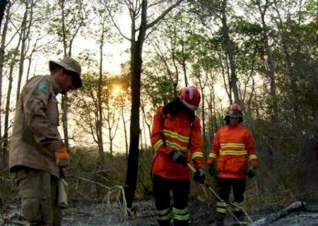 Força-tarefa fez efeito, diz governo, e chamas são controladas no Pantanal de MS