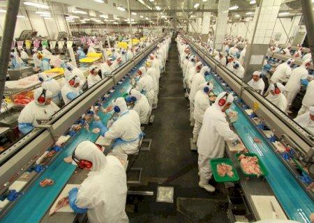 Unidade industrial de Dourados vai retomar exportação de frango para China após três meses