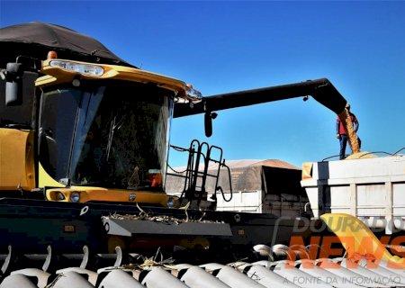 Mato Grosso do Sul bate recorde de produtividade e colhe 10,6 milhões de toneladas de milho