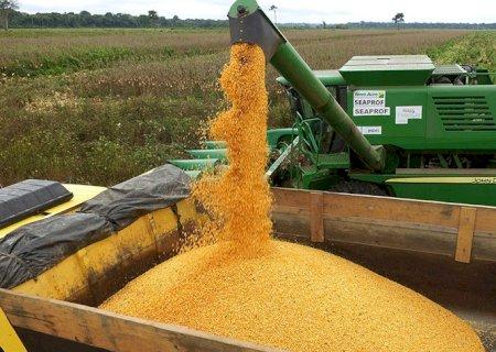 Valor da produção agrícola atinge R$ 361 bilhões em 2019 e bate novo recorde
