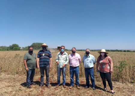 Com apoio do Estado, pequenos produtores apostam na soja orgânica