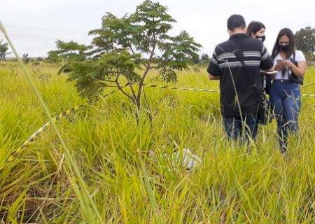 Pais de recém-nascida encontrada morta em matagal são presos