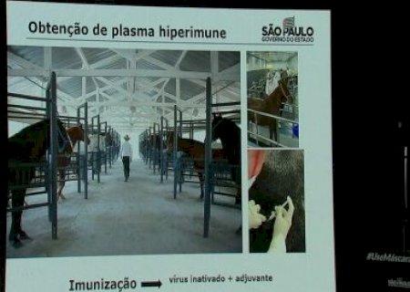Butantan envia a Anvisa pedido para testar soro anti-Covid em humanos