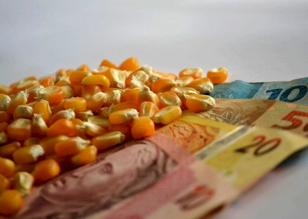 Governo autoriza retomada de crédito rural do Plano Safra 20/21 com juros subsidiados