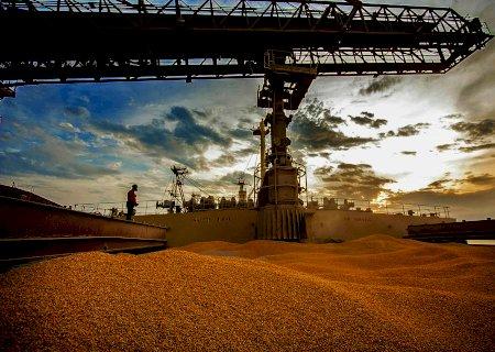 Exportações de milho do Brasil podem atingir menor volume em 10 anos