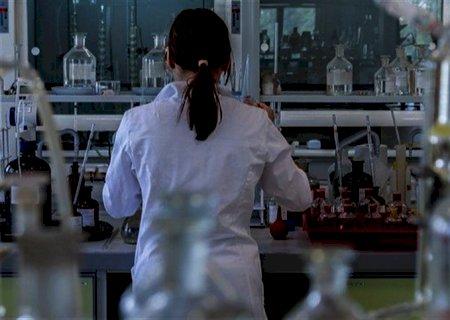 Pacu geneticamente modificado foi desenvolvido