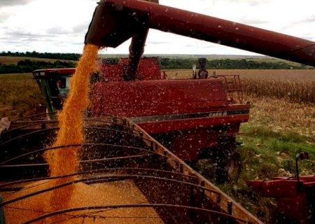 Produção agrícola de MS cresceu 53,6% em 2020 e atingiu o valor recorde de R$ 29,5 bilhões